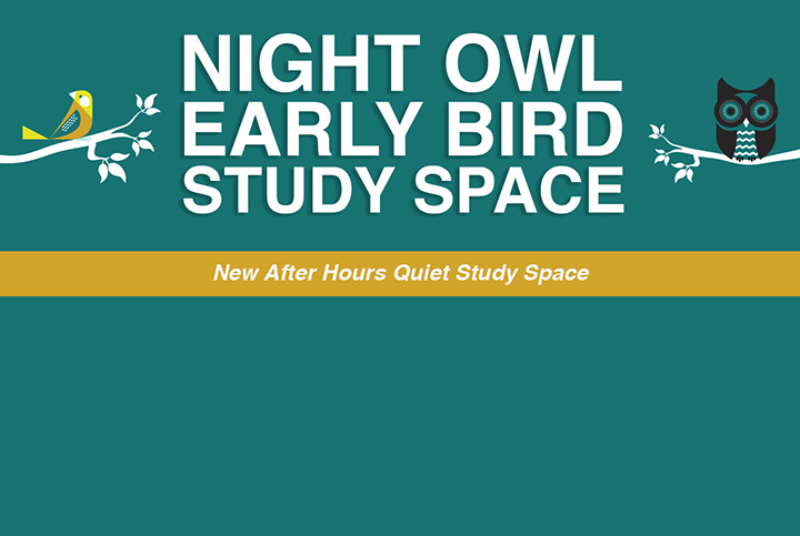 night owl early bird