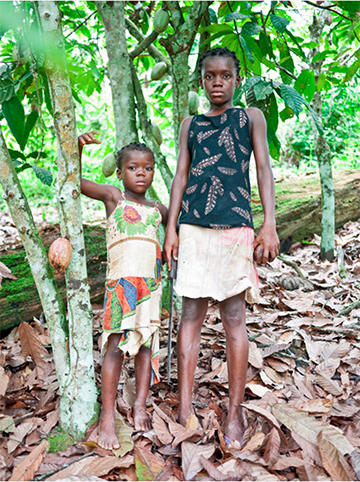 Young Girls at Cocoa Farm