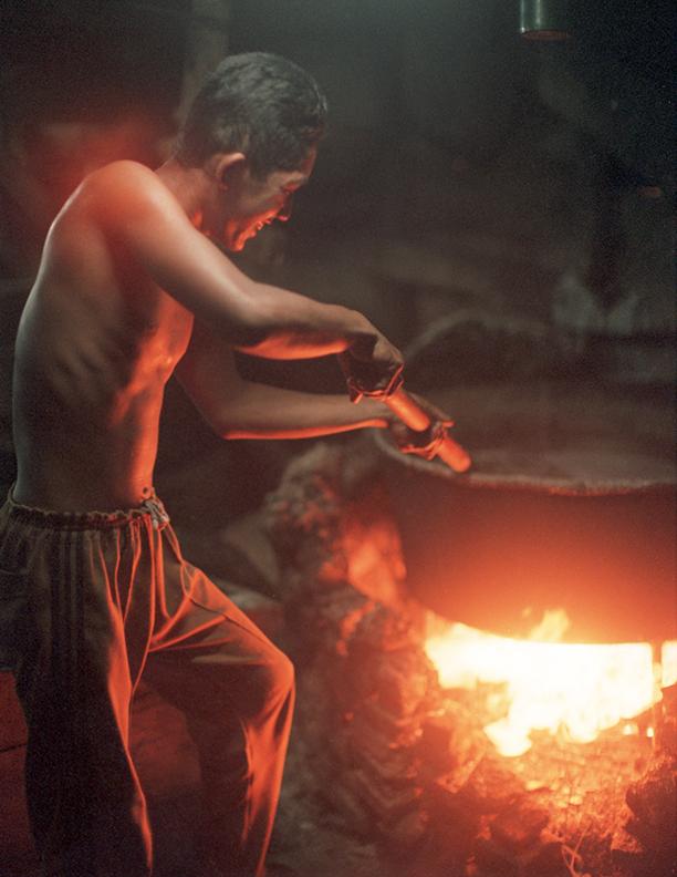 Boy Works to Boil Teri